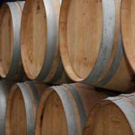 vins-primeurs-bordeaux